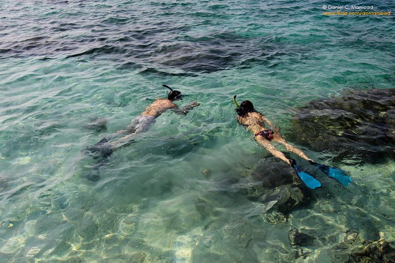 Snorkeling di Pualau Sepa