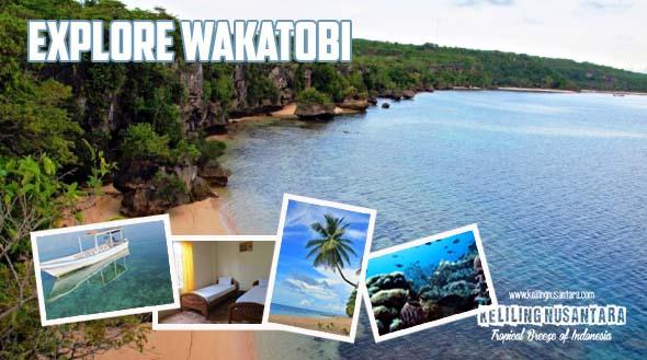 Explore Wakatobi