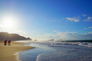 Morning in Sukamade beach