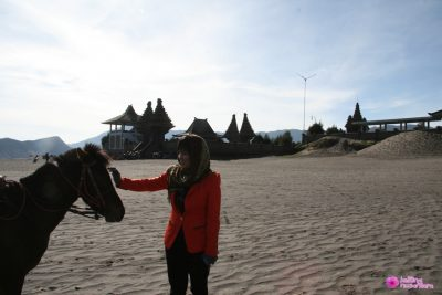 Pure Poten Bromo 400x267 Search tour package