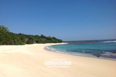 Pantai Pasir Gotri - Taman Nasional Alas Purwo