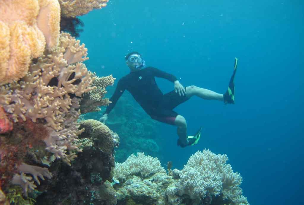 Free diving in Wakatobi